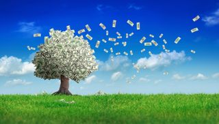 Money on trees iStock_000012693556XSmall